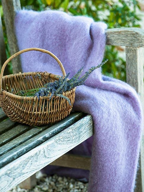 kosz lawendy na drewnianej ławce w ogrodzie obok fioletowego pledu