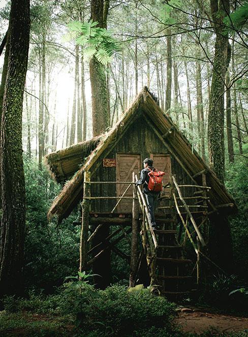 chłopiec wchodzący do domku na drzewie w lesie