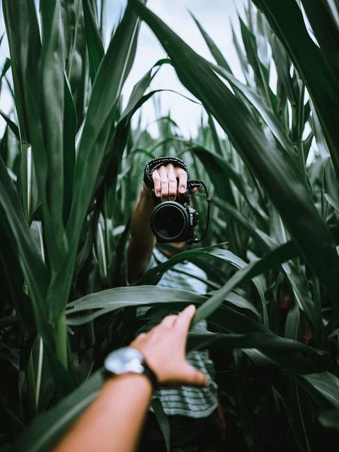 Fotografia artystyczna: mężczyzna z aparatem w polu kukurydzy