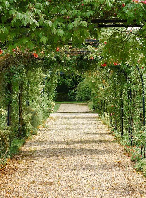 ogród francuski ze żwirem i pergolą na róże