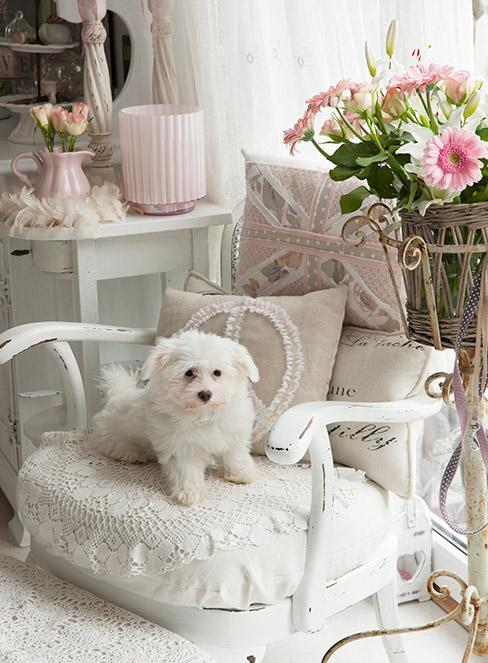 Romantyczne dekoracje shabby chic w salonie