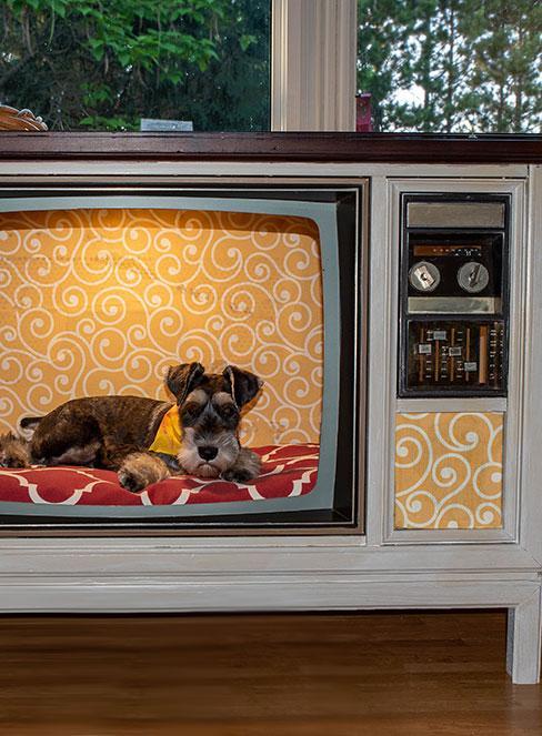 stary telwizor przerobiony na budę dla psa z małym terierem w środku