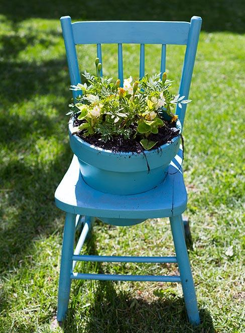 niebieskie drewniane krzesło przerobionę na doniczkę na roślinę w ogrodzie
