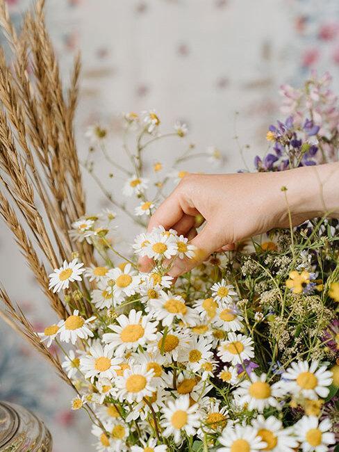 bukiet polych kwiatów