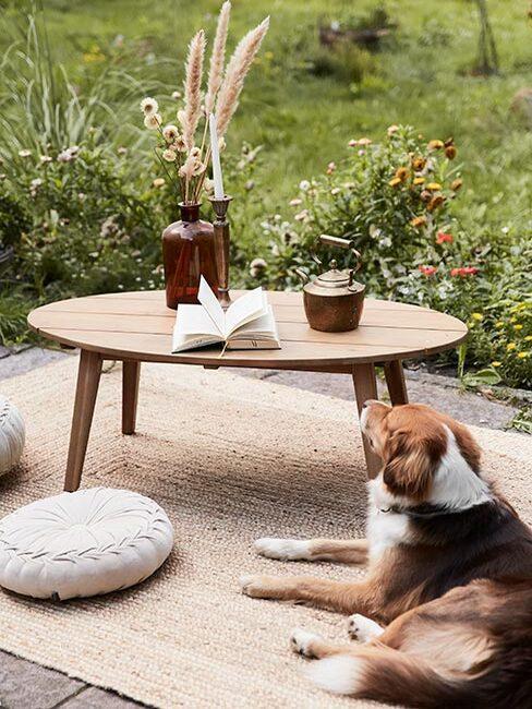 taras w wiejskim ogrodzie z psem siedzącym obok stołu