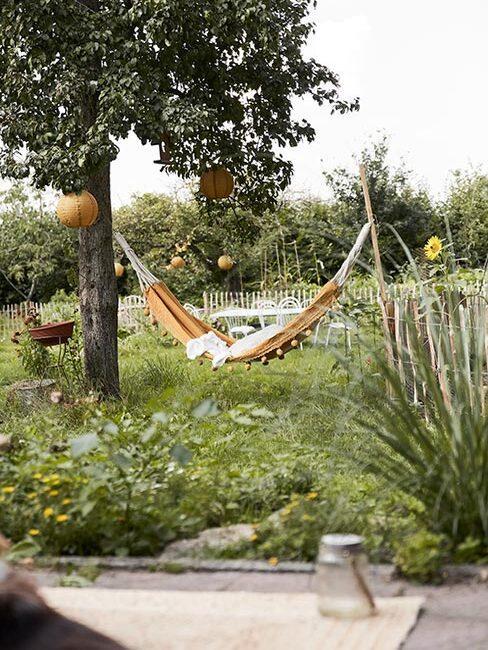 ogród wiejski z hamakiem powieszonym na drzewie