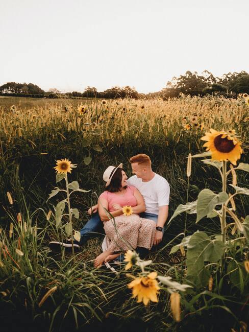 para odpoczywająca na łące wokół słoneczników