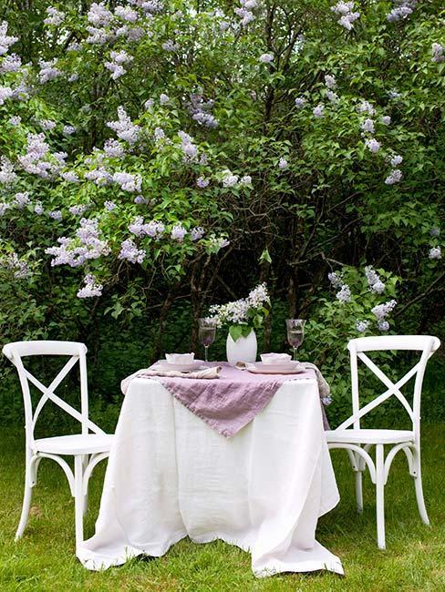 białe meble w ogrodzie wiejskim pod krzewem bzu