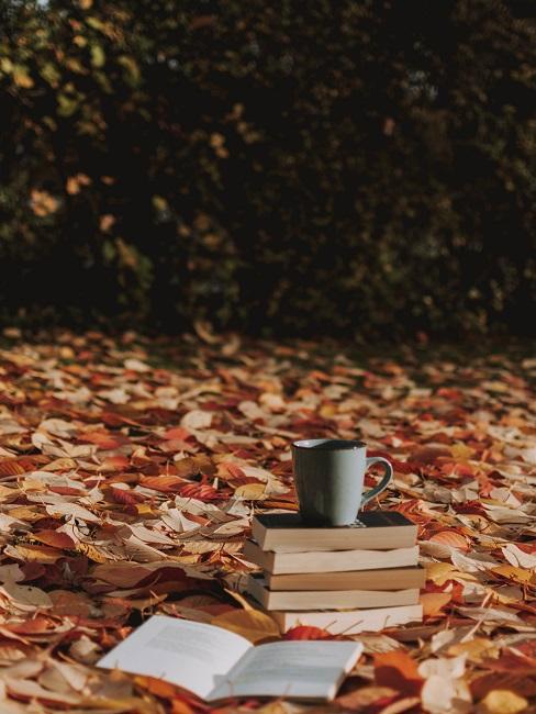 Książki i kubek na kolorowych liściach