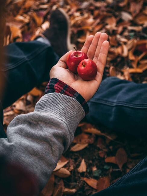 da małe jabłka trzymane na dłoni w jesiennej scenerii