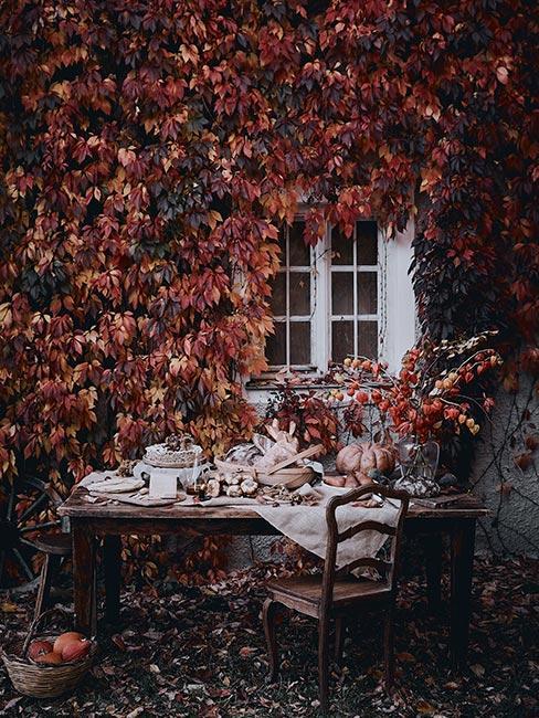 Kolory jesieni w ogrodzie