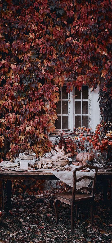 jesienne tapety: różnokolorowe liście winorośli pnące się po domu przed którym stoi zastawiony stół