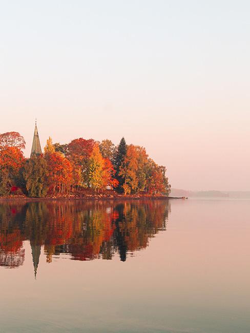 drzewa w jesiennych barwach przy jeziorze