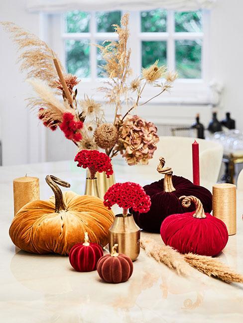 dekoracja jesienna z aksamitnych dyń obok kwiatów jesiennych