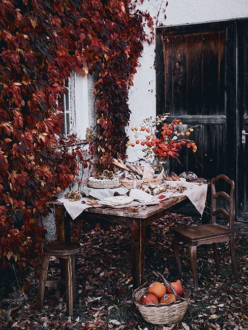 stół w ogrodzie jesienią na tle ściany pokrytej czerwonym bluszczem