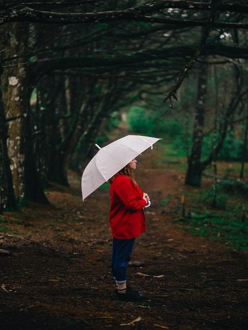 Przesilenie jesienne: kobiet a w lesie z parasolką