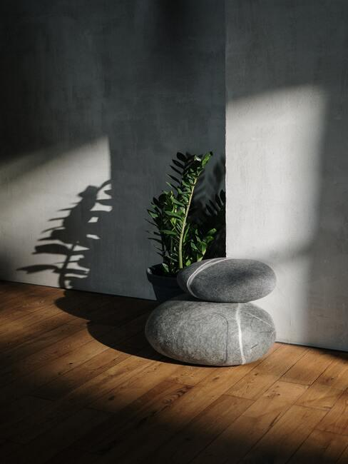 Betonowa ściana, drewniana podłoga, roślina i dodatki imitujące kamienie w szarym kolorze na podłodze
