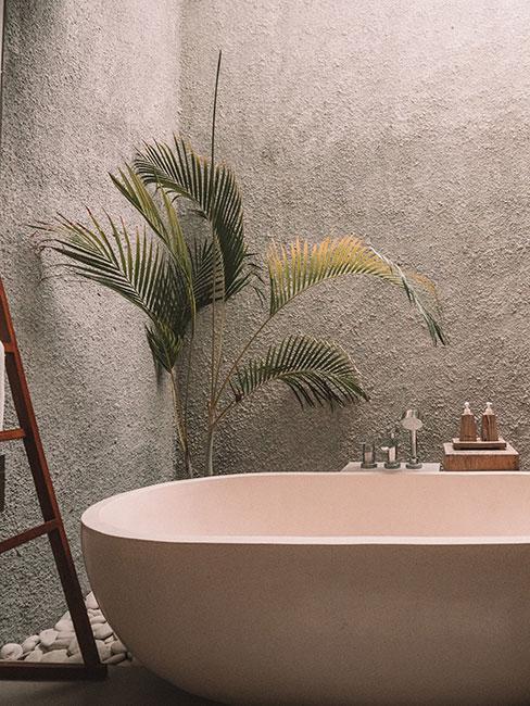 betonowa ściana w łazience z wolnostojącą wanną w kolorze neutralnym z drewnianymi dodatkami i rośliną
