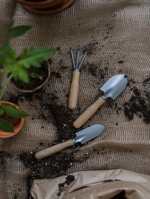 narzedzia ogrodnicze, małe sadzonki roślin, rozsypana ziemia na jutowym worku
