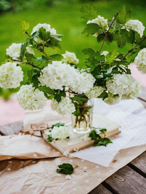 jesienne kwiaty: kalina koralowa w białym kolorze w wazonie na stole w ogródku