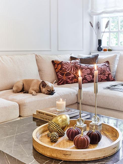 taca z dekoracjami jesiennymi w salonie z beżową sofą