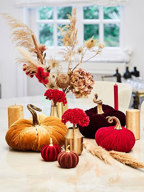 kolorowe dynie z aksamitu na jesiennym stole obok wazonu z suszonymi kwiatami