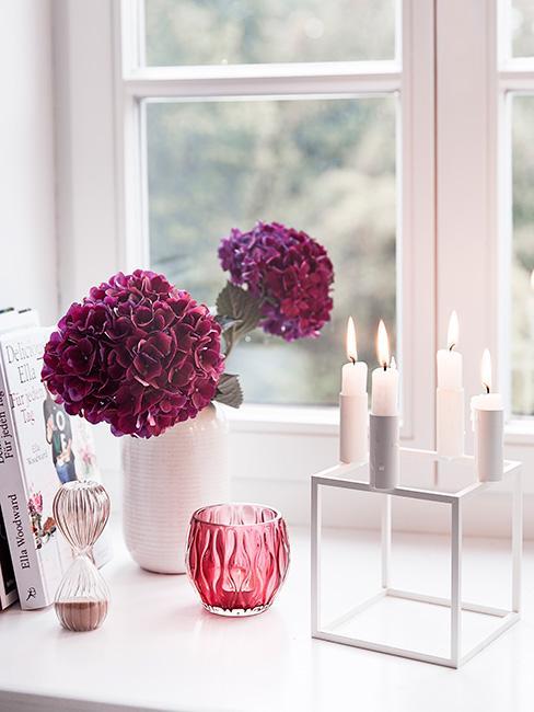 burgundowa hortensja w białym wazonie na parapecie obok białego świecznika