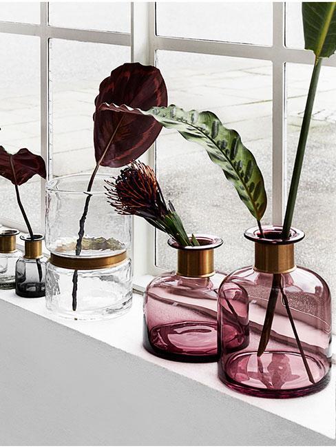 purpurowe szklane wazony na białym parapecie z pojedyńczymi kwiatami