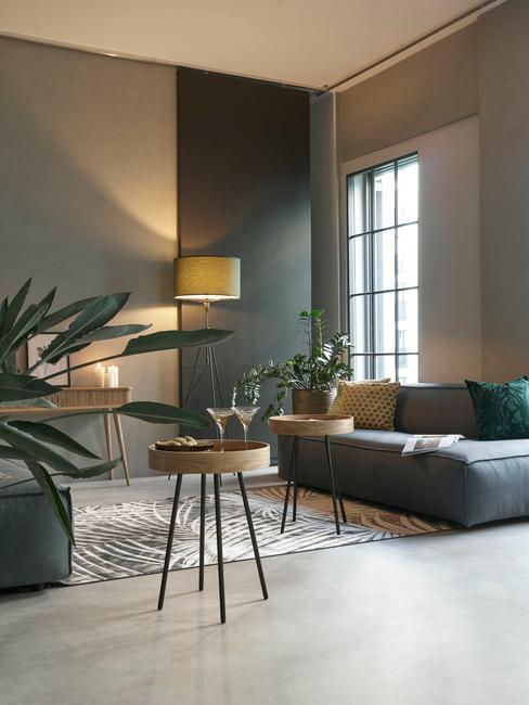 Salon z grafitową sofą i grafitowymi ścianami, oświetlony ciepłym światłem lampy, kilka roslin w osłonkach na podłodze i dywan w jasnym kolorze
