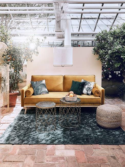 Zieleń połączona z musztardową sofą
