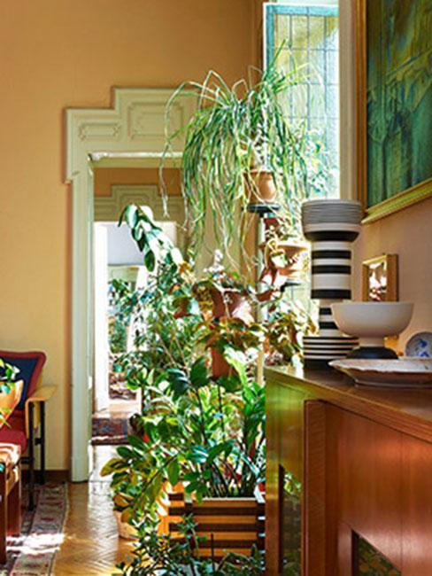 biedermeier: meble w miodowym kolorze, dużo roślin, ozdobna framuga drzwi w białym kolorze
