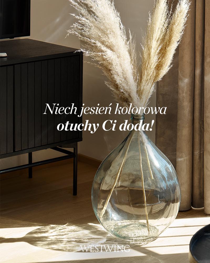 wazon podłogowy ze szkła z trawą pampasową w słońcu
