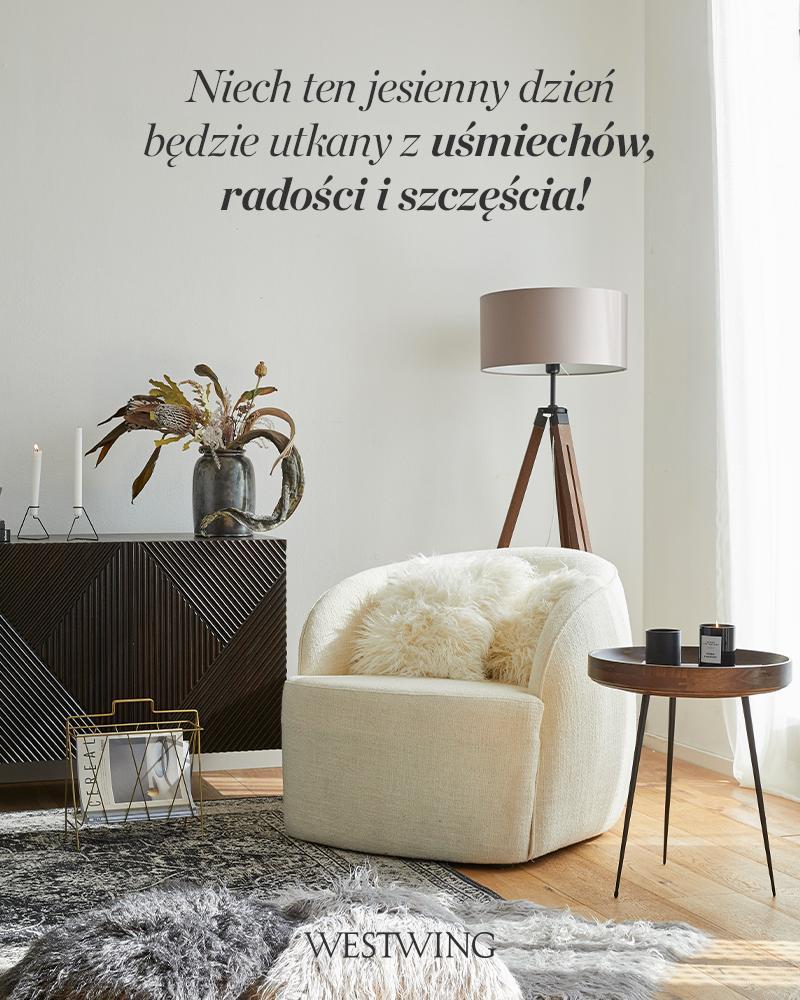 przytulny salon z fotelem w kolorze ecru obok ciemnej drewnianej komody
