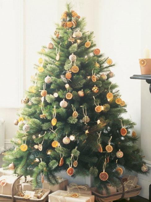 Zielona choinka na której powieszone sa naturalne ozdoby takie jak plasterki pomarańczy, szyszki i inne naturalne ozdoby