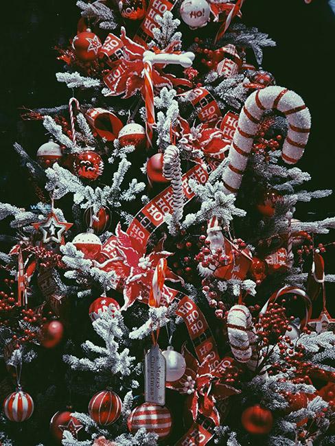 choinka czerwono złota: Choinka z ośnieżonymi sztucznym śniegiem gałązkami, z dekoracjami w kolorze złotym i różowego złota : Bogato zdobiona choinka w kolorze białym i czerwonym