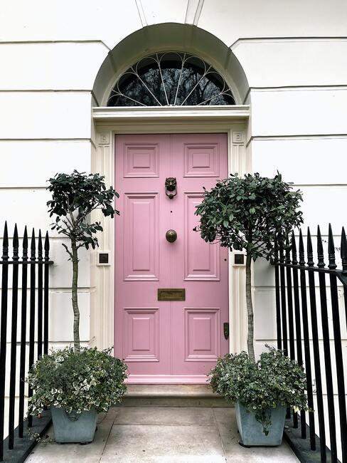 Różowe drzwi w białym budynku przed którym stoją dwie doniczki z drzewkami