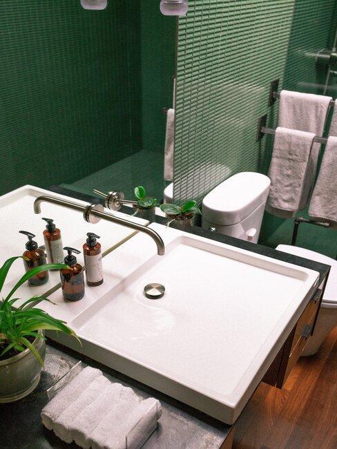 Łazienka w kolorze zielonym z roślinką i powieszonymi ręcznikami