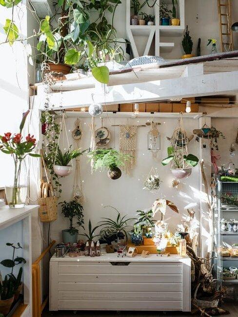 interiér plný kvetov