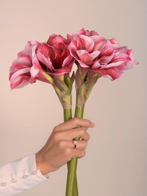 darček k MDŽ - kvety