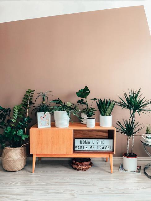 Retro stolík a izbové rastliny