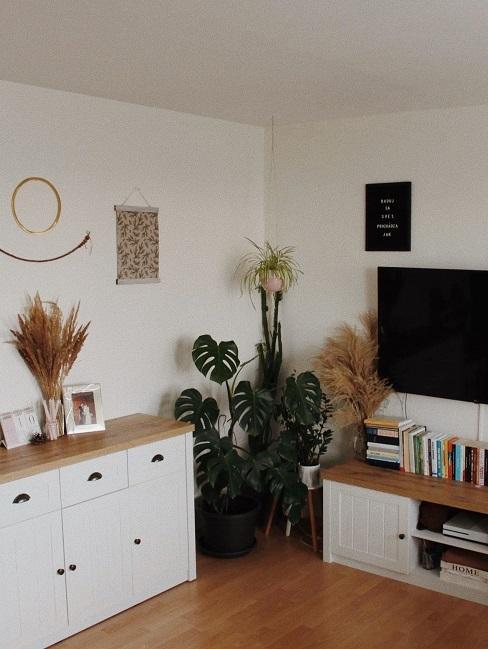 Zariadenie obývačky v skandi štýle a so sušenými trávami a bytovými rastlinami