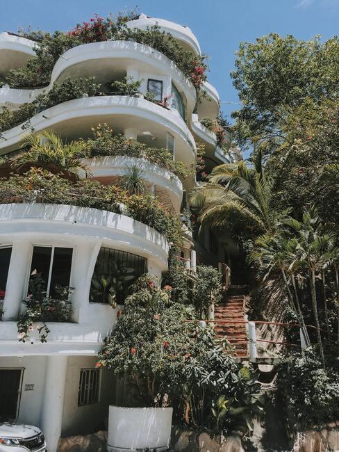 zeleň na balkóne