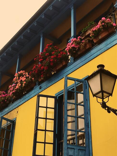 červené kvety na balkóne