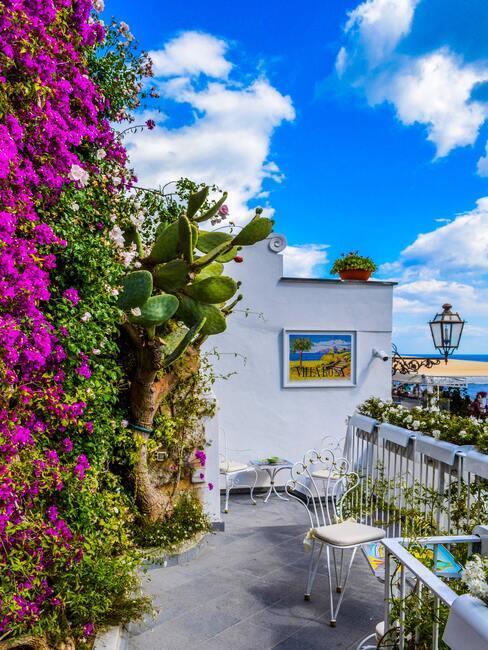 kvety na balkóne pri mori