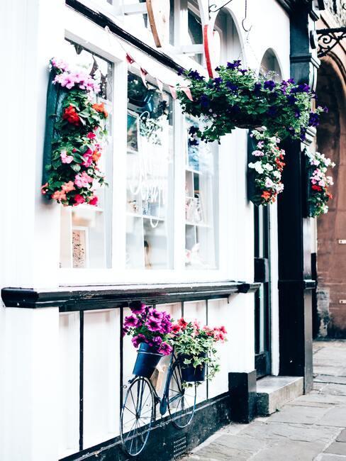 okno s kvetmi