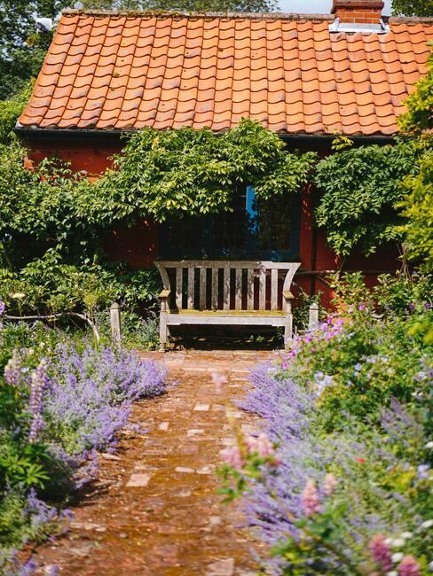 Levanduľová okrasná záhrada