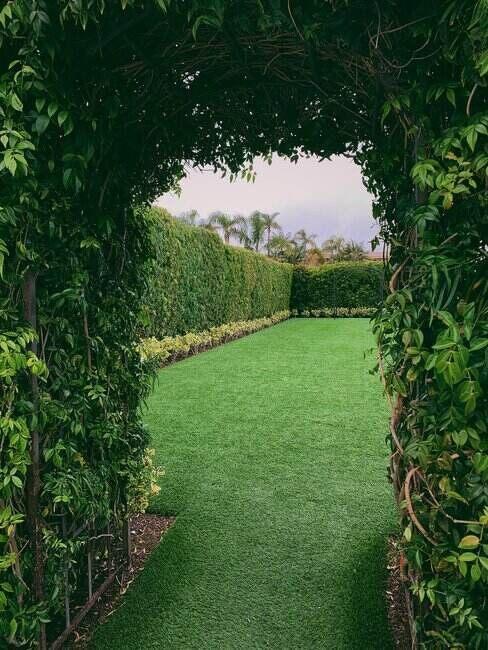 výhľad do záhrady