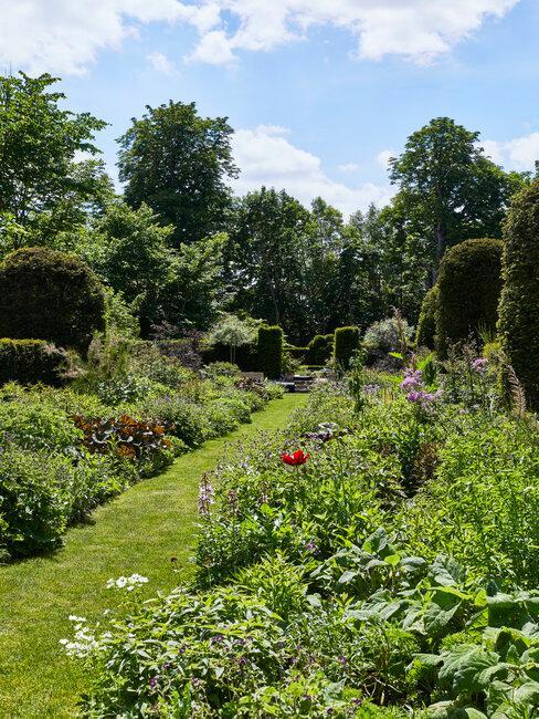 Plánovanie záhrady a tipy do záhrady