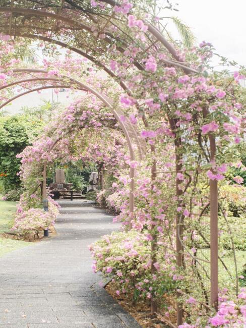 Rozkvitnuté anglické záhrady
