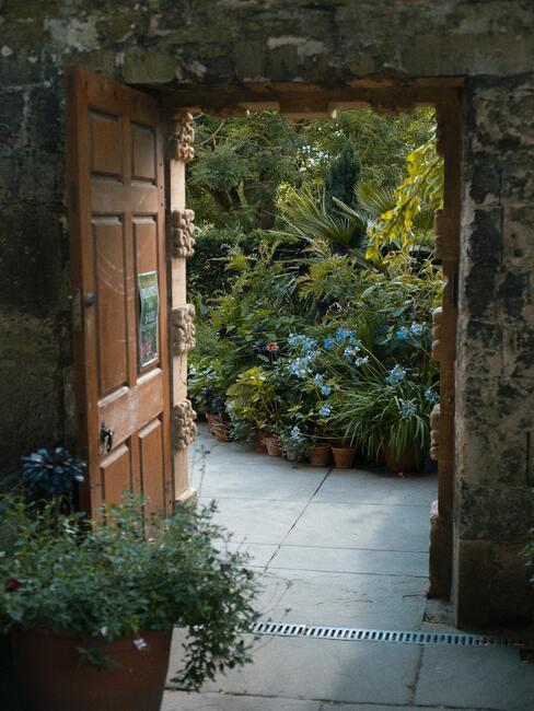 Divoká anglická záhrada